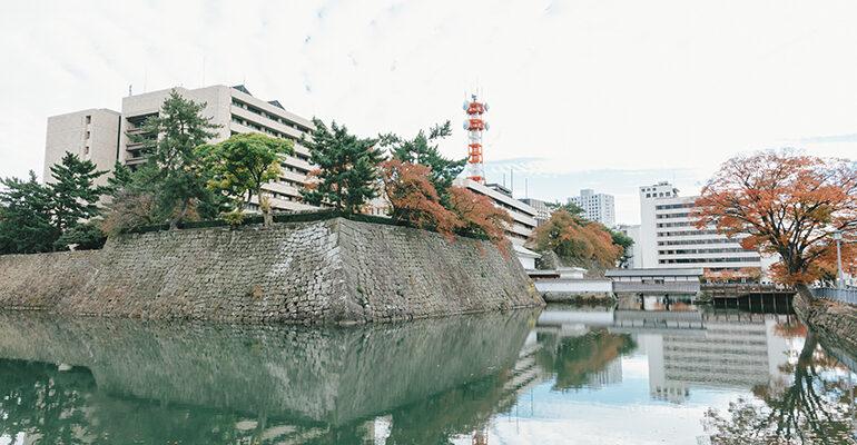 撮影地の福井城